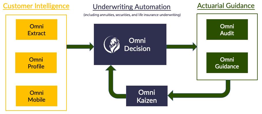 omnidescision-graphic